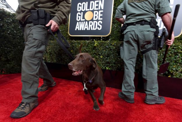 Quoted in Yahoo! News: Golden Globes Security Ramped Up After European Terror Attacks